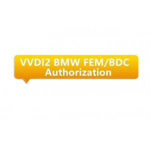 SOFTWARE BMW FEM BDC PARA...